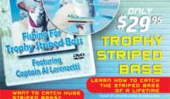 Fishing Trophy Striped Bass